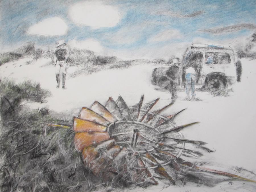 SUSAN INGRAM: Relic in the Sand Charcoal and pastel 56 x 76cm 2016