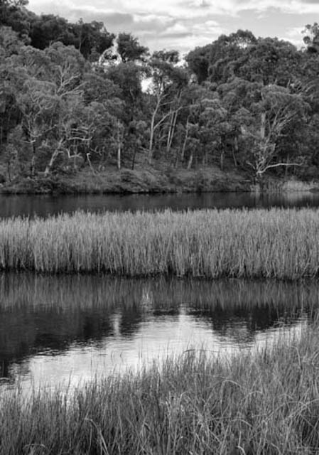 Denis Gallagher: Burraga Dam, Photograph