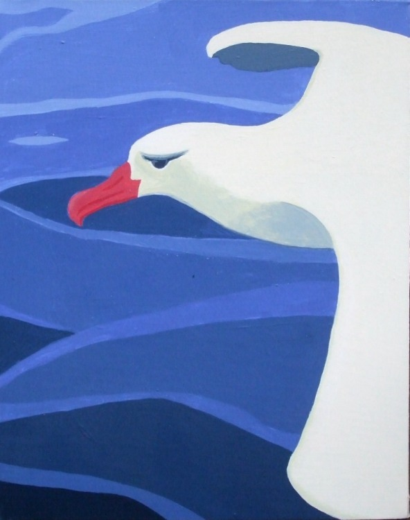 JEANNE RUDD: Albatross Medium: Acrylic on canvas Size: 40 x 55cm
