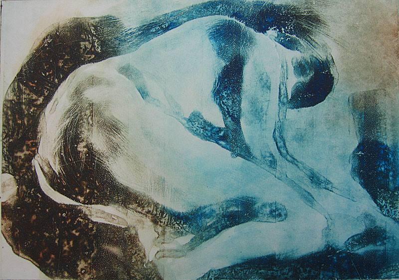 Cathy Abadie: Alice 20cm x 30cm solar print 2017