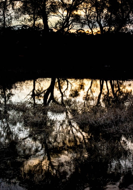 Denis Gallagher: Sunset Pond Photograph
