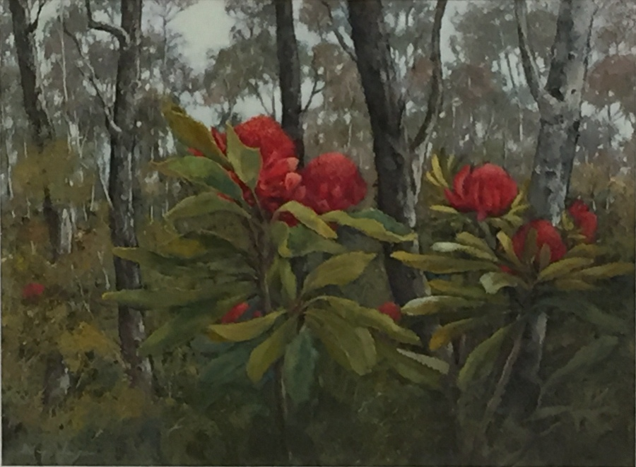 Helen Hudson:  Beauty in the Bushland   Acrylic