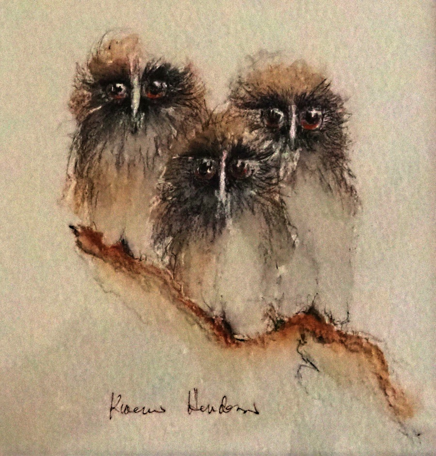 Karen Henderson: 3 Owls	33.5cm x 43.5cm	Watercolour Pencil & Pen work	2018