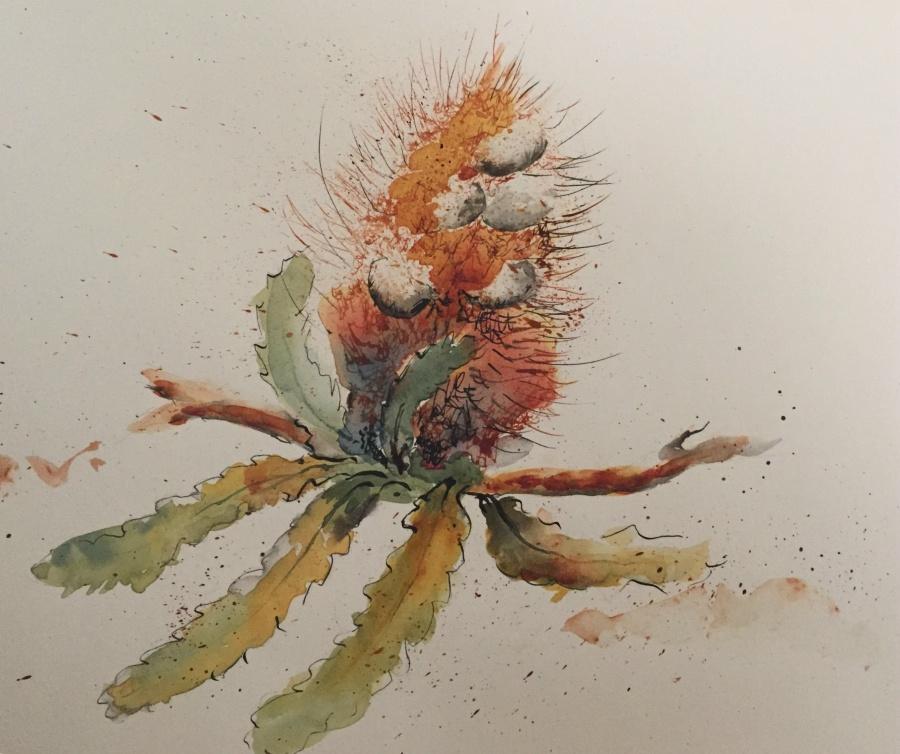 Karen Henderson: Grevillea (unframed)300cm x 420cmPen & Ink Wash2018