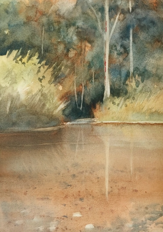 Bob Richardson:  Forest Waters	35x25	Watercolour	2017