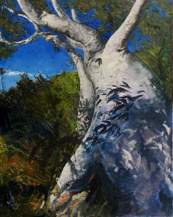 Constance Ellwood: Tree overlooking the Grose51 x 30oils2020