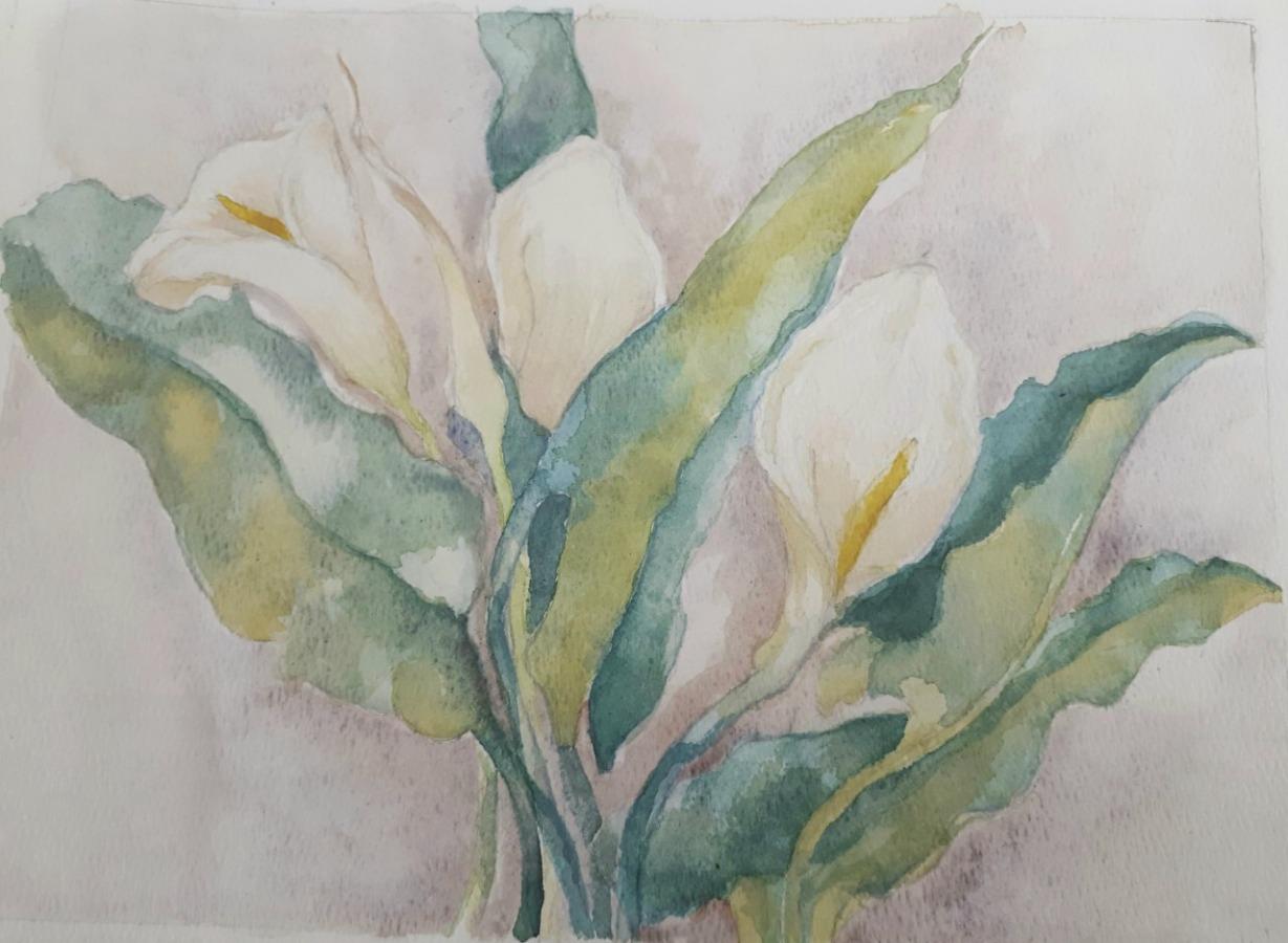 JENNIFER PRICE; Lilies - Carrington Gardens20.5cms (W) X 27.5cms (L)Watercolours2020
