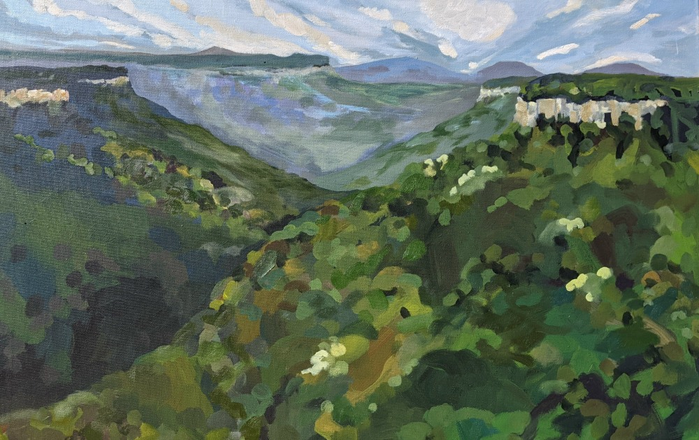 Jennifer Buick:  Evans lookout900 x 560mmAcylic and oil on canvasDec 2020